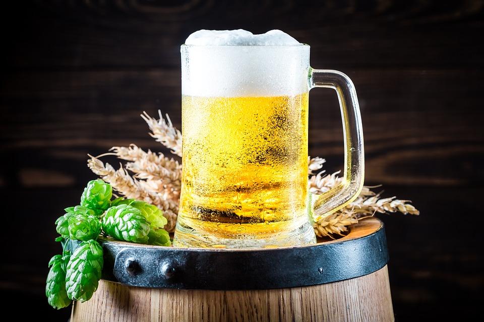 быстрое пиво в домашних условиях